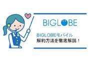 BIGLOBEモバイルの解約方法について徹底解説!【注意点/タイミング】