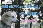 SoftBank(ソフトバンク)のプラン見直しをしよう!新料金プランで安く賢く!